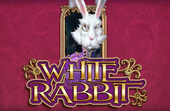 White Rabbit Gokkast