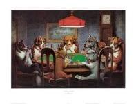casino poker uitleg