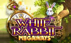 Gokkasten White Rabbit